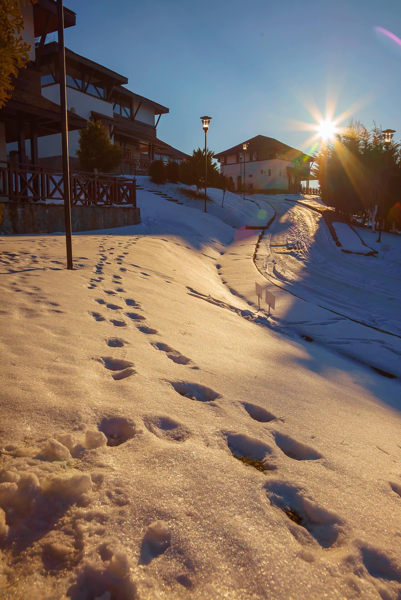 SatulPrunilor_Iarna_Exterior_035